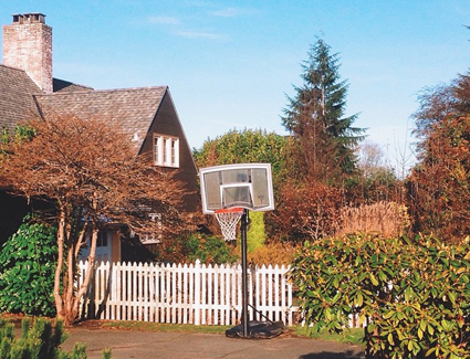 "Instagram du jour : ""Neighborhoops"""